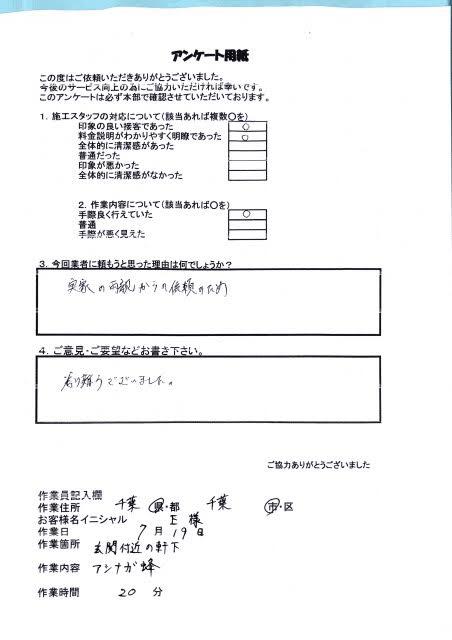 千葉県花見川区 アシナガバチ ハチ王